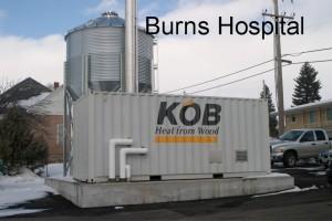 Burns-Hospital-biomass
